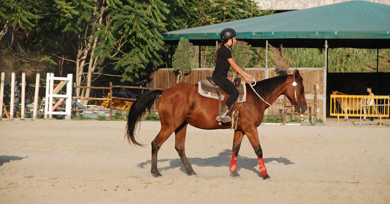 Prenota una lezione di equitazione
